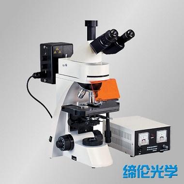 上海缔伦TL3001正置落射荧光显微镜