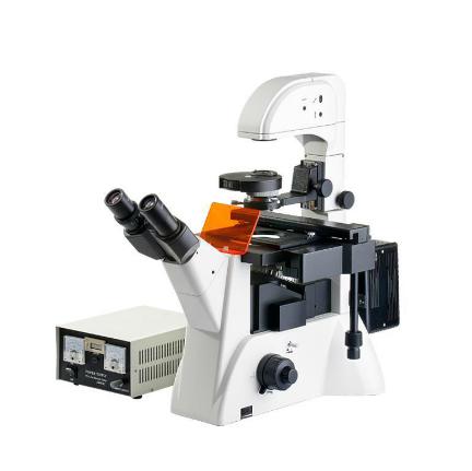 上海缔伦DXY-2倒置荧光生物显微镜