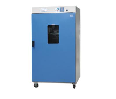 上海齐欣DGG-9920A立式电热鼓风干燥箱