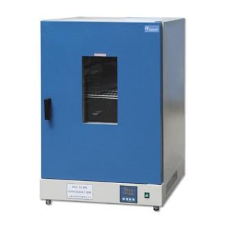 上海齐欣DGG-9240A立式电热鼓风干燥箱